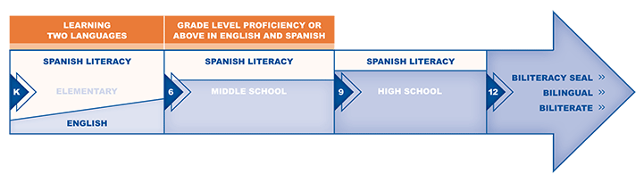 Dual Language Graphic